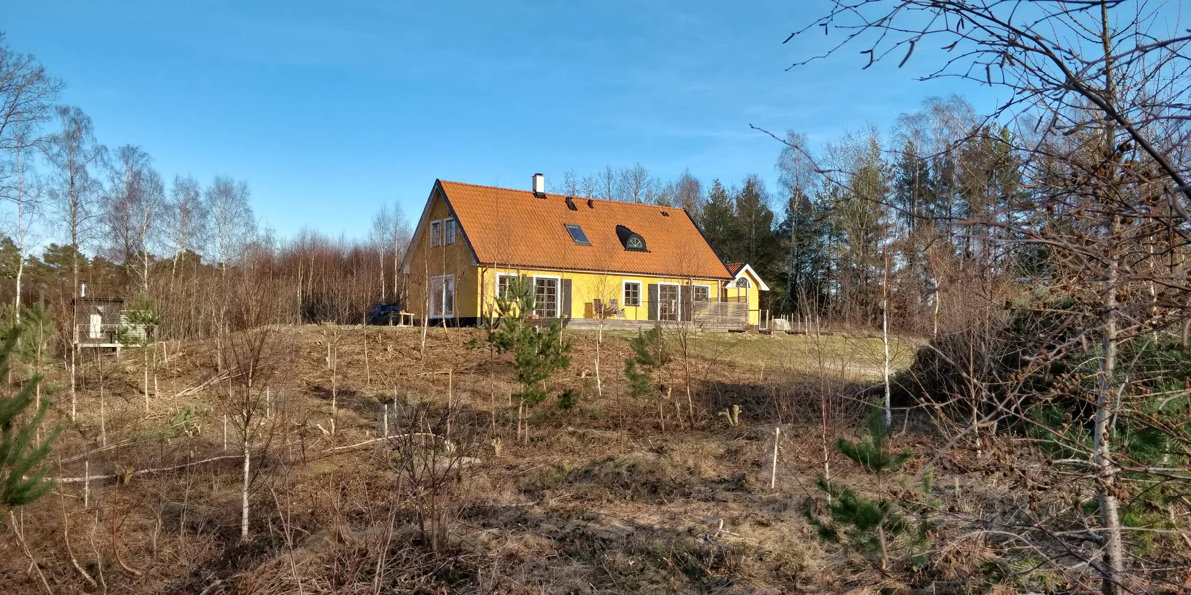 Our beloved house, seen from the midst of newly planted trees on the slope.